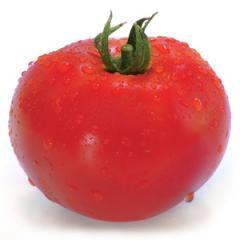 Hitomaks f1/hitomaks f1 — a tomato