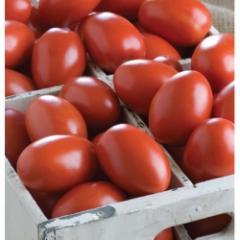 Granadero f1/granadero f1 — a tomato