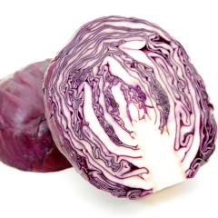 Roxie f1/roxy f1 - a red cabbage, seminis of 2500