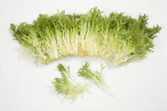 Korb / korbi rz - salad, rijk zwaan of 1000