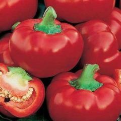 Dumas / dumas — pepper sweet, moravoseed of 50