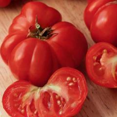Fiorentinsky / fiorentinsky — a tomato