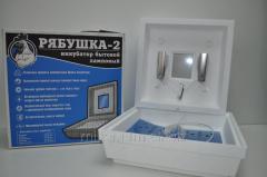Инкубатор Рябушка-2 на 70 яиц с електроным