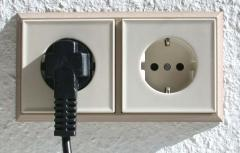 Fork plug and the socket, the plug, a nest and