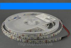 LED tape 12V Epistar 3528SMD 60 of piece IP20 blue