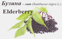 Frozen elderberry