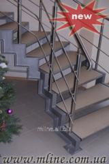 Ladder dvukhkosaurny 4.22