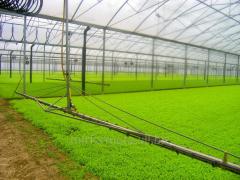 Block greenhouses