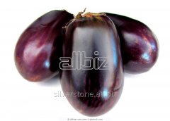 The eggplants frozen