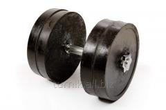 Sports dumbbells 21 kg (G-4 code)
