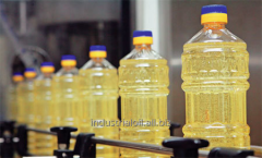 The purified oil deodorized