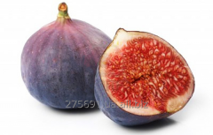 The fig is dried