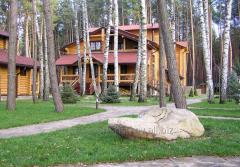 Дом деревянный 0002