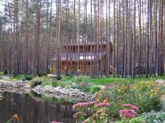 Дом деревянный 0003