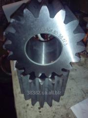Gear wheel 2TE10L.30.58.123-1
