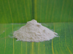 Enzyme of an ekonaz