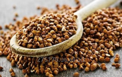 Unground buckwheat