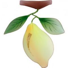 Украшение для штор Лимон -240*210 модель  AF0009