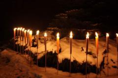 Садовые свечи в Украине. Садовые свечи от