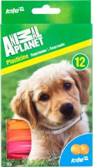 Plasticine soft 12tsv 200gr AP16-086-2 31957