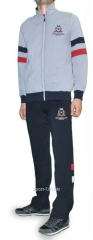 Спортивный костюм MXC мастерка светло-серая штаны серые