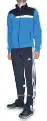 Спортивный костюм Adidas мужской штаны серые с белыми полосами мастерка голубая