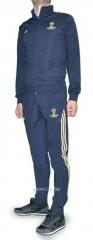 Спортивный костюм Adidas Лига чемпионов серый с логотипом