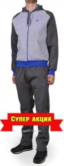 Зимний спортивный костюм мужской Nike серый