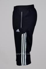 Бриджи Adidas черные плащевка