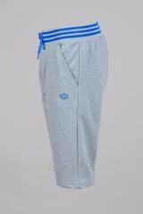Бриджи Adidas серые с синей резинкой
