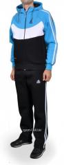 Зимний спортивный костюм Adidas черно-голубой