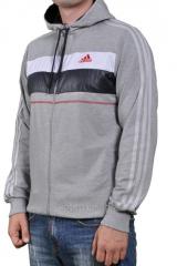 Мастерка Adidas серая на молнии мужская