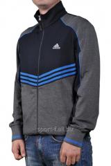 Мастерка Adidas серая на молнии