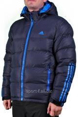 Куртка мужская синяя Adidas