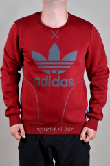 Sports Adidas jacket winter red color