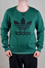 Sports Adidas jacket winter green with a log