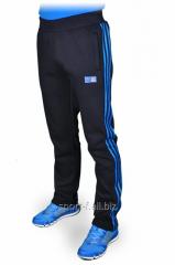 Зимние спортивные брюки Adidas.