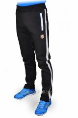 Зимние брюки Adidas Porsche Design.