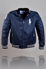 Куртка  Polo.
