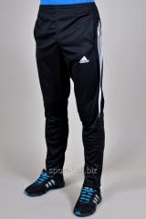 Брюки спортивные Adidas зауженные