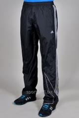 Брюки спортивные Adidas летние