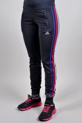 Спортивные брюки Adidas  летние