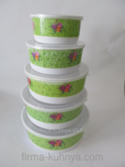 Set of containers for food 229