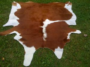 Skin of a cow Brown-white big