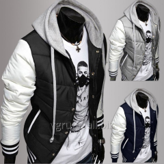 The sports men's jacket with a hood, fall /