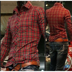 Men's shirt in a cage, a plaid shirt, a