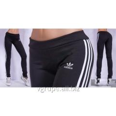 Sports Adidas leggings, female sports pants,