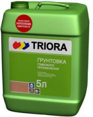 Primer of deep penetration of Triora 10 of l