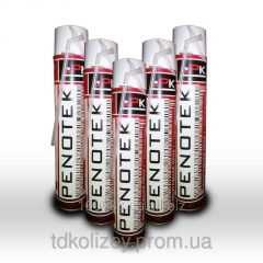 Polyurethane foam all-weather PENOTEK(750 of ml)