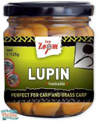 Lupin LUPINE